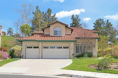 Temecula Single Family Home For Sale: 32129 Caminito Osuna