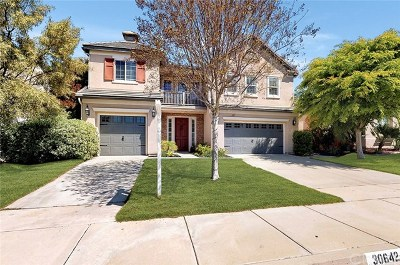 Murrieta Single Family Home For Sale: 30642 Lily Pond Lane