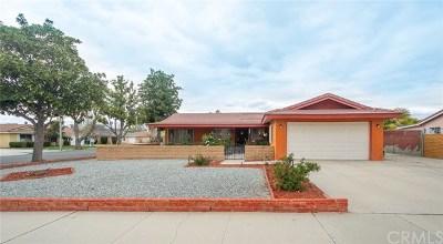 Hemet Single Family Home For Sale: 40662 Brock Avenue