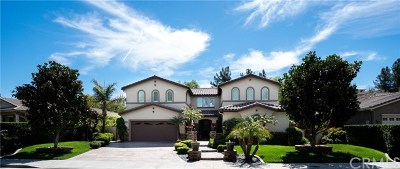 Temecula Single Family Home For Sale: 33057 Sage Court
