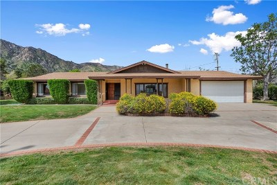 Lake Elsinore Single Family Home Active Under Contract: 33025 Machado Street