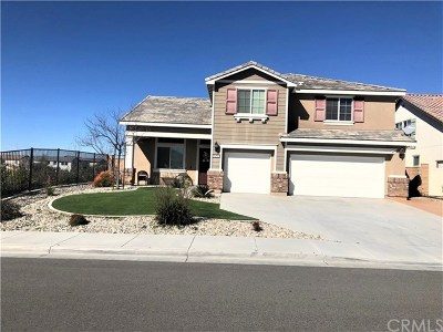 Winchester Single Family Home For Sale: 34751 Meadow Willow Street