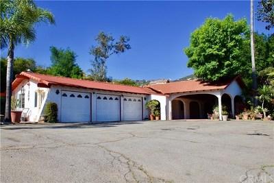 Escondido Single Family Home For Sale: 10090 Via Marmol
