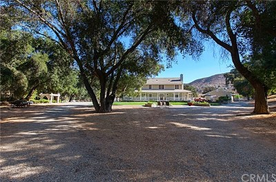 Temecula Single Family Home For Sale: 39805 Colt Road
