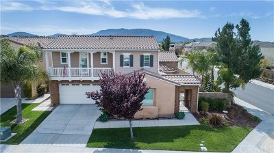 Temecula Single Family Home For Sale: 32009 Woodside Court