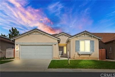 Hemet, San Jacinto Single Family Home For Sale: 426 Bjorn Court