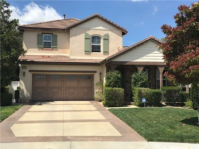 Temecula Single Family Home For Sale: 28564 Dalton Road