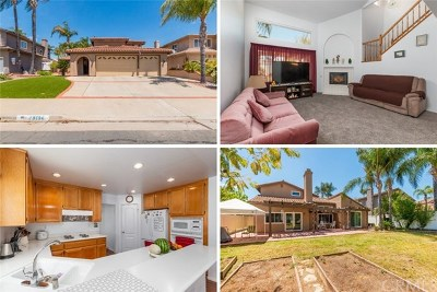 Murrieta Single Family Home For Sale: 40196 Via Reata