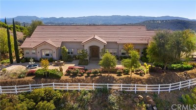 Murrieta Single Family Home For Sale: 20450 Vista Flora Road