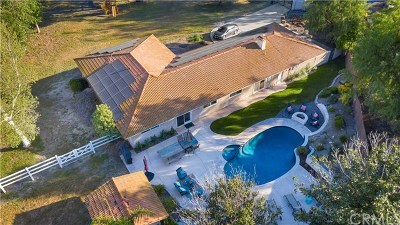 Temecula Single Family Home For Sale: 43810 Villa Del Sur Drive