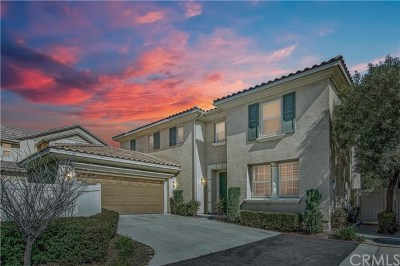 Temecula Single Family Home For Sale: 27412 Blackstone Road