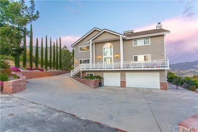 Fallbrook Single Family Home For Sale: 42243 Via Del Gavilan