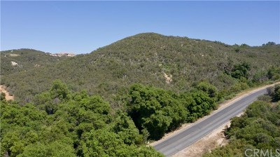 Murrieta Residential Lots & Land For Sale: Hombre