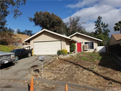 Temecula Single Family Home For Sale: 41818 6th Street