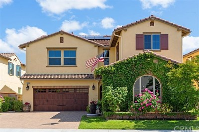 Temecula Single Family Home For Sale: 31709 Country View Road
