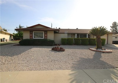 Menifee Single Family Home For Sale: 28991 Hogan Drive