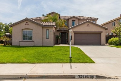 Lake Elsinore Single Family Home For Sale: 32824 Turtle Dove Drive
