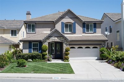 Murrieta Single Family Home For Sale: 37720 Botanica Place