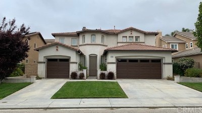 Murrieta Single Family Home For Sale: 27115 Tube Rose Street