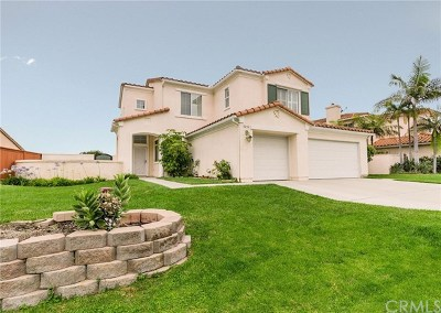 Carlsbad Single Family Home For Sale: 5214 Frost Avenue