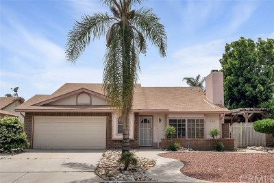 Hemet Single Family Home For Sale: 751 Piccadilly