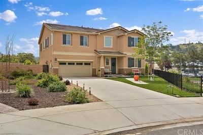 Escondido Single Family Home For Sale: 2022 Meadow Vista Place