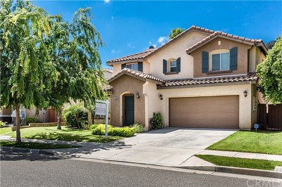 Lake Elsinore Single Family Home For Sale: 32039 Meadow Wood Lane