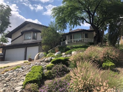Canyon Lake Single Family Home For Sale: 21692 Appaloosa Court