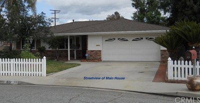 Hemet Single Family Home For Sale: 621 Buena Vista Parkway