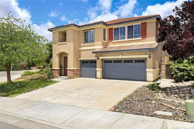 Lake Elsinore Single Family Home For Sale: 41002 Sunsprite Street