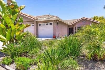 Murrieta Single Family Home For Sale: 39578 Ramshorn Drive