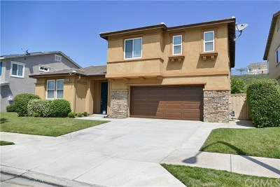 Lake Elsinore Single Family Home Active Under Contract: 34274 Canyon Rim Drive