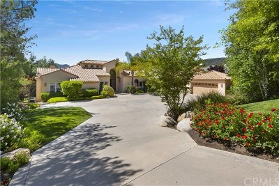 Murrieta Single Family Home For Sale: 22285 Bear Creek Drive N