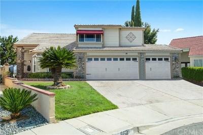Diamond Bar Single Family Home For Sale: 662 Foxhaven Pl