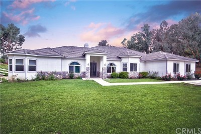 Temecula Single Family Home For Sale: 40447 Paseo Del Cielo