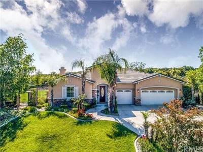 Riverside Single Family Home For Sale: 7925 Brasado Way
