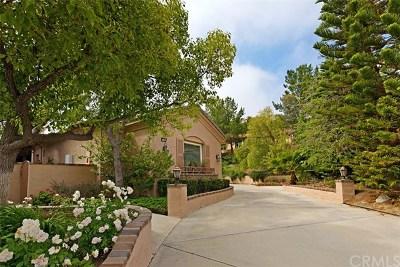 Murrieta Single Family Home For Sale: 37940 Sky High Drive