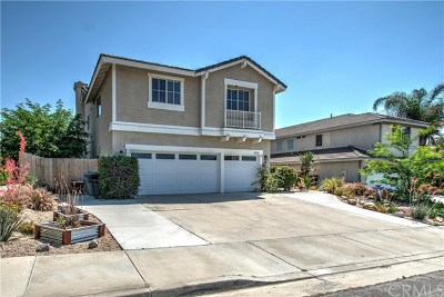Wildomar Single Family Home For Sale: 22890 Timber Lane