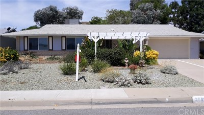 Sun City Single Family Home For Sale: 27961 Radford Drive