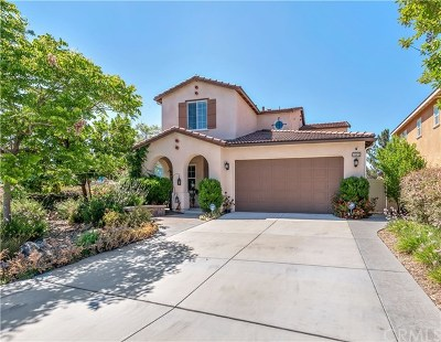 Temecula Single Family Home For Sale: 32973 Caminito Lorca