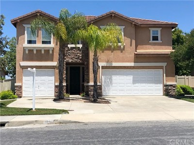 Temecula Single Family Home For Sale: 33686 Channel Street