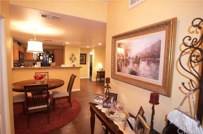 Canyon Lake, Lake Elsinore, Menifee, Murrieta, Temecula, Wildomar, Winchester Rental For Rent: 44766 Adam Lane