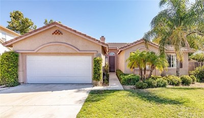 Murrieta Single Family Home For Sale: 41147 Denian Court