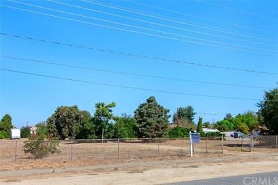 Murrieta Single Family Home For Sale: 41885 Lemon Street