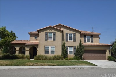 Menifee Single Family Home For Sale: 30045 Dew Hurst Street