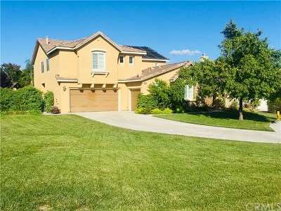 Temecula Single Family Home For Sale: 43902 Country Ridge Court