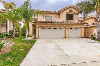Temecula Single Family Home For Sale: 32110 Camino Guarda
