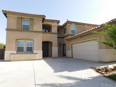 Menifee Single Family Home For Sale: 33574 Magnetite Street