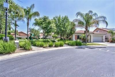 Menifee Single Family Home For Sale: 29800 Bay View Way