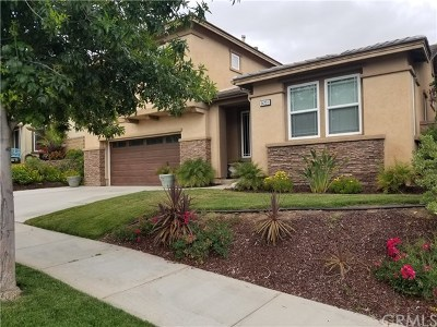 Lake Elsinore Single Family Home For Sale: 34291 Hickory Lane